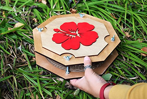Hawaiian Red hibiscus BIG botanical flower leaf press for Herbarium (personalization available) (Herbarium Press compare prices)