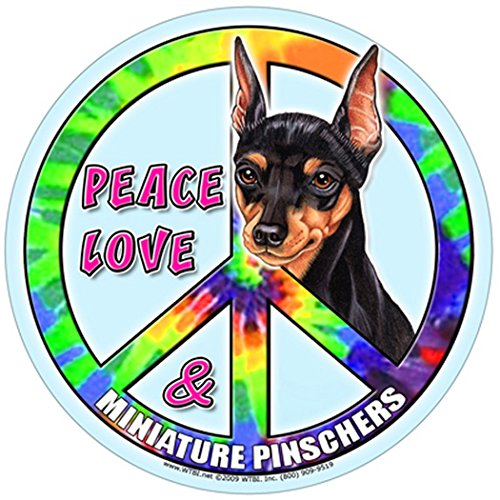 "Miniature Pinscher 5"" Round Hippie Dog Magnet With Bonus Novelty Christopher Columbus Million Dollar Bill front-116795"