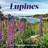img - for 2016 Maine Lupine Down East Wall Calendar book / textbook / text book