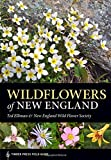 img - for Wildflowers of New England: Timber Press Field Guide (A Timber Press Field Guide) book / textbook / text book