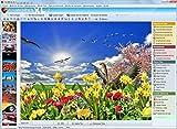 FotoWorks XL (2017) - Edición fotográfica, Editor de Fotos - Editar Fotos - Muy fácil de usar