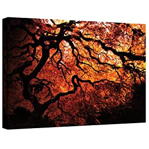 Art Wall Japanese Tree by John Black Gallery Wrapped Canvas, 36 by 48-Inch
