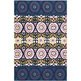 Safavieh Cedar Brook Collection CDR127E Handmade Blue and Pink Cotton Area Rug, 4-Feet by 6-Feet
