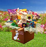 Fun Family Easter Gift -Easter Care Package for Families -Deluxe