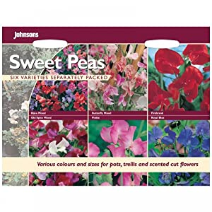 Mr Fothergill's Sweet Peas Collection