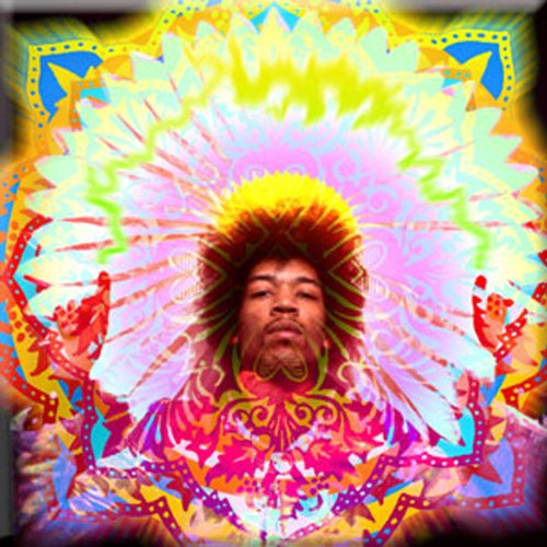 Licenses Products Jimi Hendrix Electric Daisy Magnet