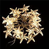 TLT 20 LED Starfish Shaped String Lights (Warm White) - Great for Beach Party LED015