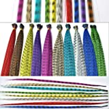Feather Hair Extension Kit with Synthetic Feathers 100 Beads Plier and Hoo (35 Feather) (Color: 35 Feather)