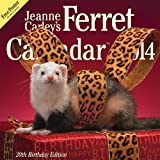 2014 Jeanne Carleys Ferret Calendar, 20th Birthday Edition Wall