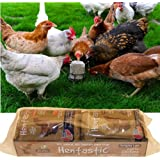 Hentastic Forage Cake Value Twin Pack with Mint, Parsley, Garlic & Ginger 2 x 350g.