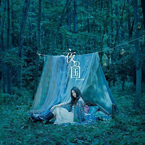 夜の国(初回限定盤)(DVD付)