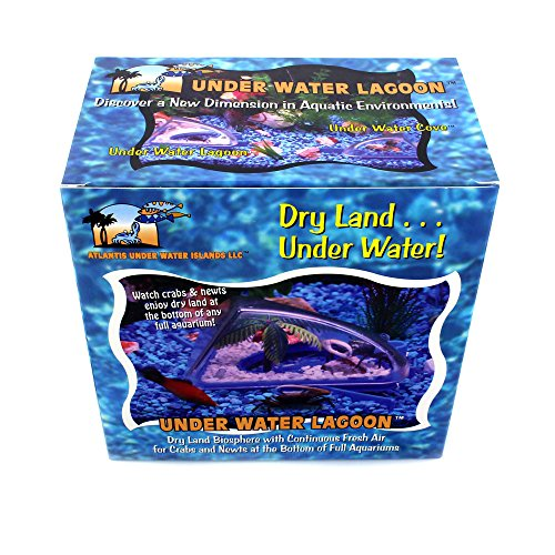 crab-home-underwater-lagoon