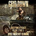 Grid Down: Perceptions of Reality: Volume 2, Part 3 Audiobook by Bruce Buckshot Hemming Narrated by Tyler J. Singleton