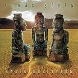 Sonic Boulevard by Tomas Bodin (2003-09-08)