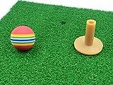 ゴルフ用 練習マット (30cm×60cm) & ウレタンボール30個 (01ゴルフ用練習マット&ウレタンゴルフボール30個セット)