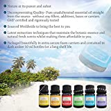 Premium-Essential-Oils-Set-and-Diffuser-Necklace-Professionals-Therapeutic-Grade-Reduce-Chemicals-in-Your-Life-Lift-Your-Mood-and-Sleep-Better-Best-Pure-Aromatherapy-Lavender-Peppermint-4-more