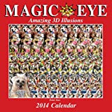Magic Eye 2014 Wall Calendar