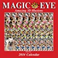 Magic Eye 2014 Wall Calendar: Amazing 3D Illusions
