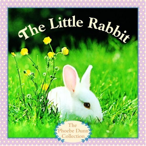 The Little Rabbit by Jodi Dunn