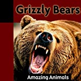 Grizzly Bears (Amazing Animals (Weigl))