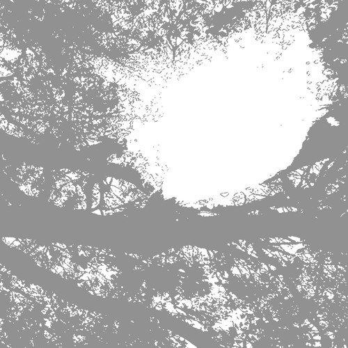 Vinilo : Comets on Fire - Field Recordings from the Sun (LP Vinyl)