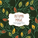 img - for Autumn Magic: Gorgeous Autumn Patterns to Color (Color Magic) book / textbook / text book