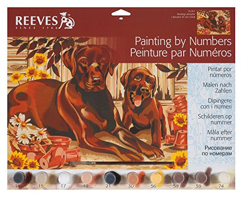 Reeves Resting Labrador Large Acrylic Paint By Numbers Set