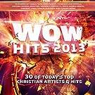 WOW Hits 2013 [2 CD]