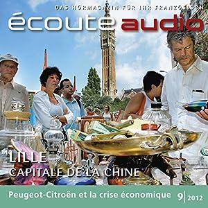 Écoute audio - La braderie de Lille. 9/2012 Audiobook