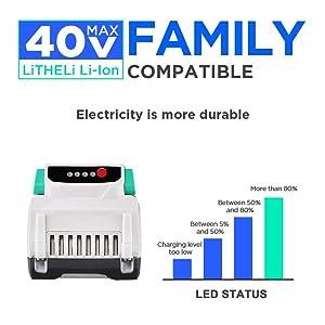 Litheli 40V 2.5AH Lithium Ion BatteryPack