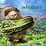 What a Whopper! Guinea Pig Birthday Card