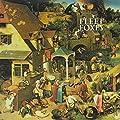 Fleet Foxes + Sun Giant (Vinyl)