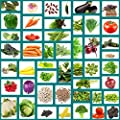 Survival Vegetable Seeds Non Hybrid 47 Variety Heirloom