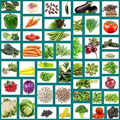 Survival Vegetable Seeds Non Hybrid 47 Variety Heirloom