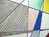 The Drawings of Roy Lichtenstein (0870704168) by Lichtenstein, Roy
