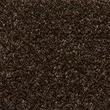 Dark Brown Feltback Twist Quality Carpet - 4m Wide, 5.5m Long