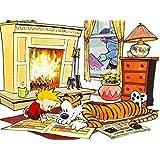 Comics Calvin & Hobbes Hobbes Calvin 3 ON FINE ART PAPER HD QUALITY WALLPAPER POSTER