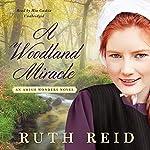 A Woodland Miracle: An Amish Wonders Novel, Book 2 | Ruth Reid