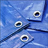 Grizzly Tarps GTRP912 9-feet by 12-feet Multi-Purpose 6ml Waterproof Poly Tarp Cover for Tent, Shelter, Camping, Blue