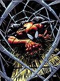 スーペリア・スパイダーマン:マイ・オウン・ワースト・エネミー