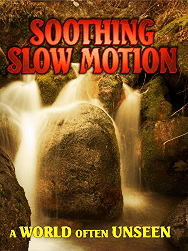 Soothing Slow Motion: A World Often Unseen