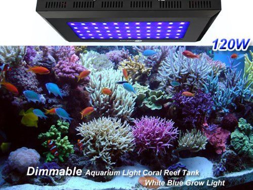 TaoTronics® TT-AL09 165w Dimmable Led Aquarium Lights Aquarium Hoods Led Reef Light for Coral Fish Seaweed (55*3w, Blue/White Ratio- 28:27; Two-Year Warranty)