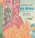 Sea Horse: Read and Wonder: The Shyest Fish in the Sea