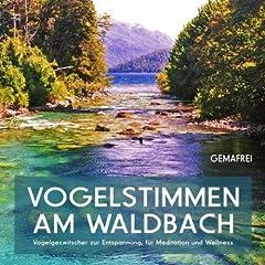 Vogelstimmen am Waldbach - Vogelgezwitscher zur Entspannung, f�r Meditation und Wellness (gemafrei)