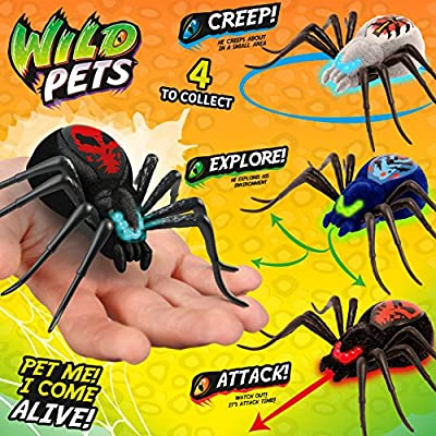 Wild Pets Spider Single Pack (Styles May Vary)