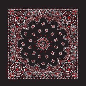 Carolina Hav, A, Hank Paisley Bandanna, 22-Inch by 22-Inch, Black, Red, White