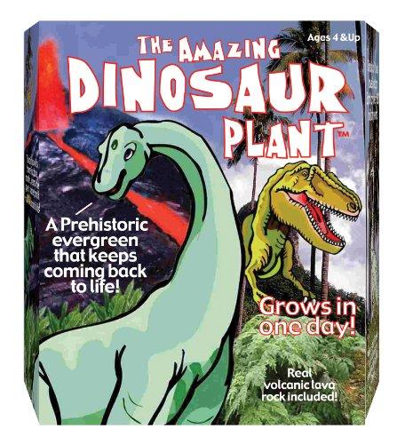 Dino Plant - 1