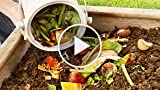 How to make and use compost in your garden