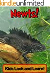 Newts! Learn About Newts and Enjoy Co...