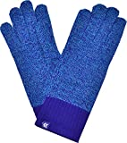 Isotoner Women's Smartouch Metallic Blue Heather One Size